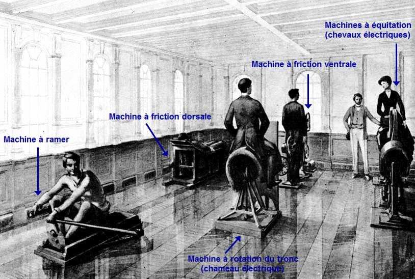 Quels sont les 3 sports que vous auriez aimé pratiquer à bord Gymnase_shipbuilder